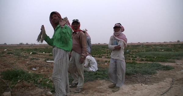 Three documentaries shine a light on the harsh conditions faced by Nepali migrant labour
