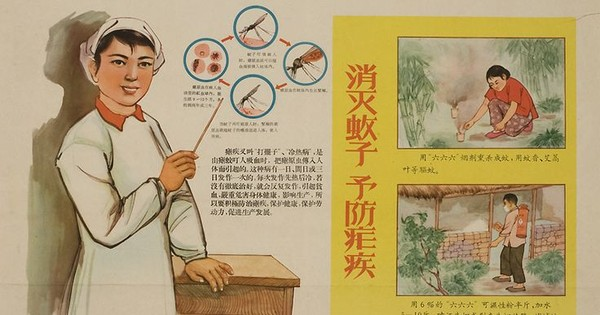 The secret Maoist Chinese operation that conquered malaria – and won a Nobel