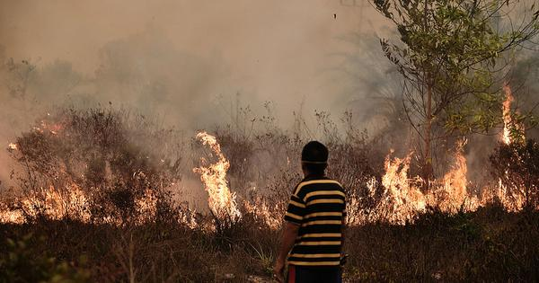 Why Indonesia can't stamp out fires that have cast a haze over South-East Asia