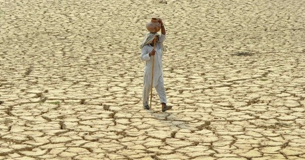 Why government compensation doesn't give drought-hit farmers any relief
