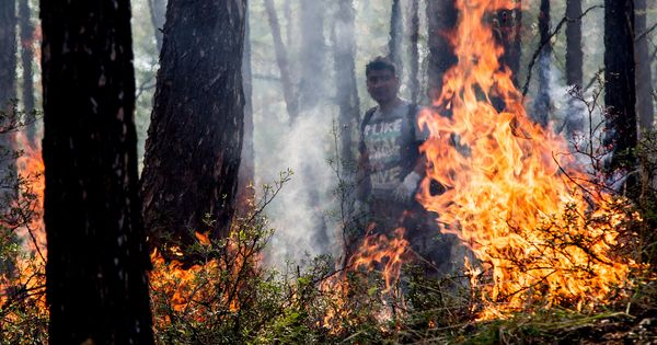 Vast wildfires are burning in remote Siberia, far from humans – here's why we should care