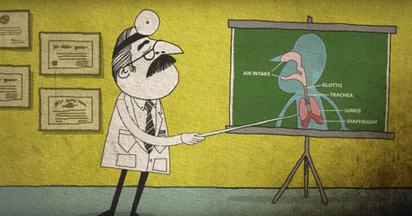 Why do we hiccup? Watch this animated video for explanations