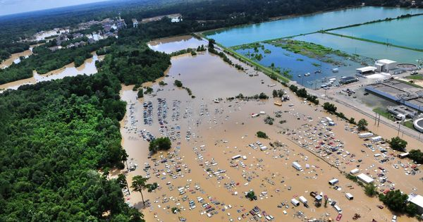 Do floods play a vital role in ecosystems?