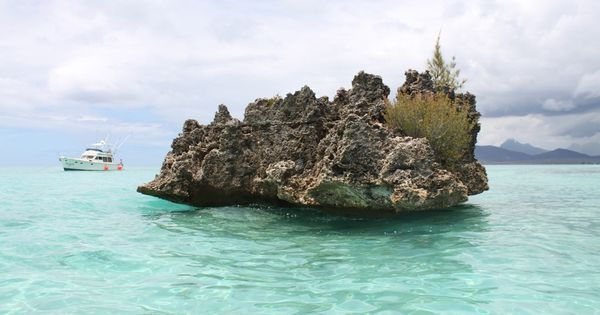 Why the discovery of a small piece of continent in the Indian Ocean matters