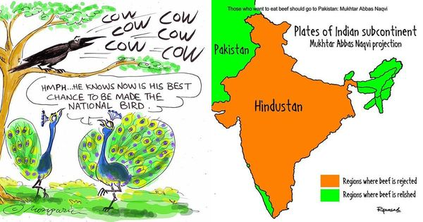 Bovine inspiration: India's cartoonists are finding dark humour in new cattle rules