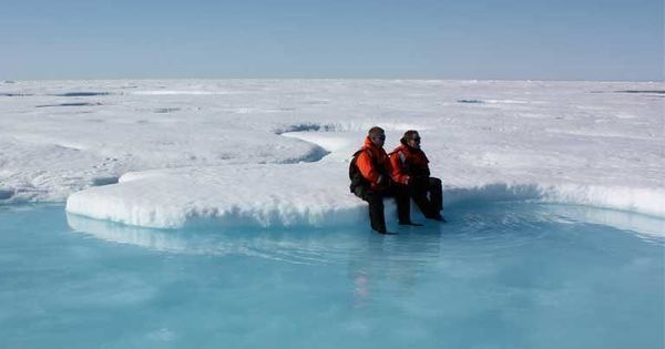 Sea ice enthusiasts are tracking Arctic melt on the blogosphere