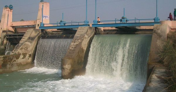 Angry elephants and disappearing fish: Small hydel plants are no green alternative to big dams