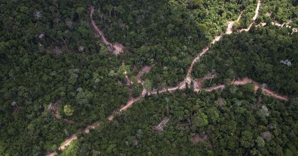 Brazil strips Amazonian reserve of its protected status, opens tract larger than Denmark to mining