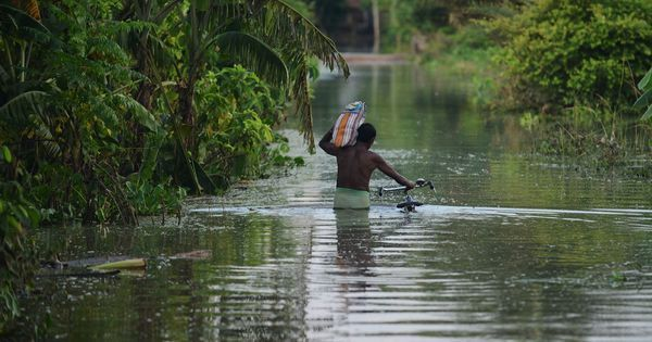 Devastation everywhere: Poor planning for floods has destroyed livelihoods in south Bengal