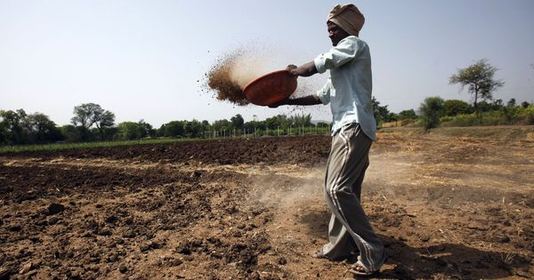 One reason India's ambitious fertiliser subsidy reforms stumbled – Aadhaar authentication failures
