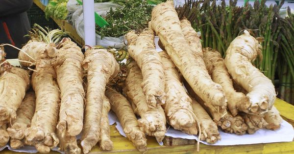 Can horseradish and garlic really ease a cold? There's no scientific evidence to back the claim