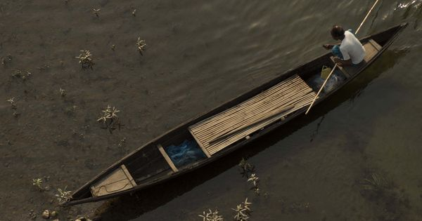 Baskets, boats and bridges: An exhibition in Delhi showcased lives woven around bamboo