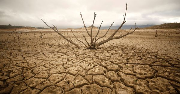 South Africa drought: Cape Town reduces water consumption, taps will not run dry till June