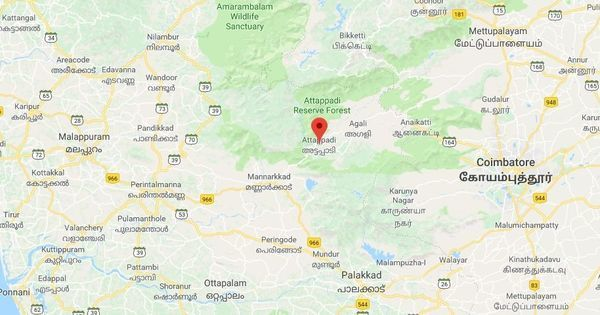 Kerala: 16 people arrested for killing adivasi man in Attappady