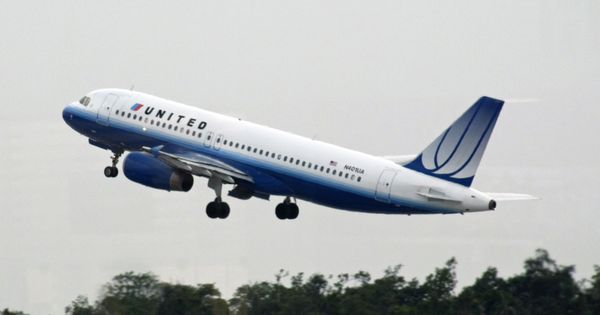Dog dies in a United Airlines flight after attendant forces owner to keep it in overhead bin