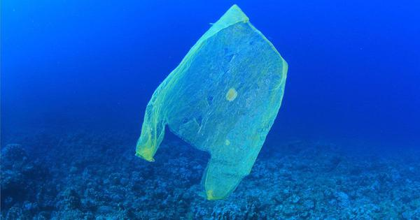 Plastic pollution is hurting life-giving ocean bacteria that produce 10% of the world's oxygen