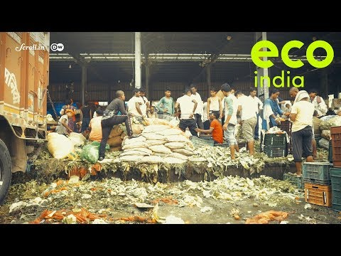 Eco India, Episode 43: The environmental and social impacts of food losses and food wastage