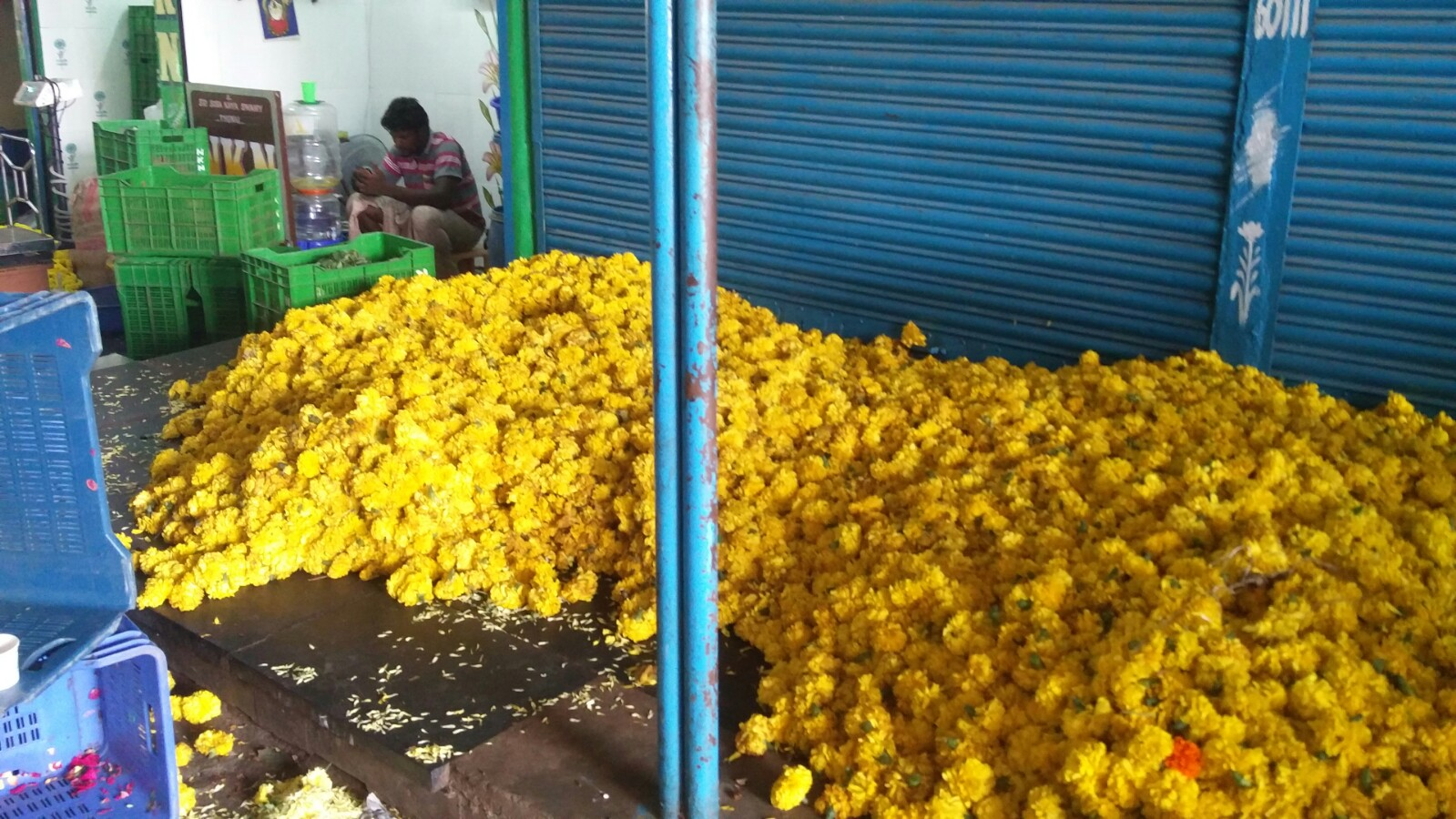 Only The Poor Were Affected Chennai S Flower Traders Doubt The Success Of Demonetisation
