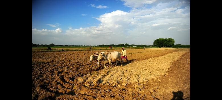 Six charts that will change the way you think about land use in India