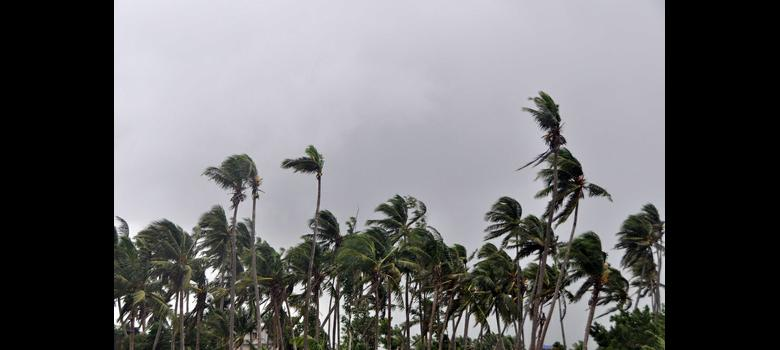 Cyclone Hudhud leaves eight people dead in Odisha and Andhra Pradesh