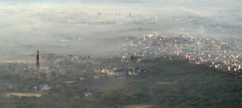 Delhi Birds: Aerial views of the national capital, through smog and sunshine
