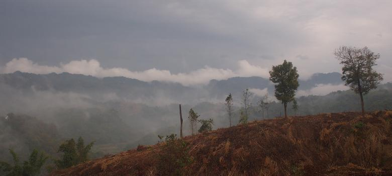 How the Congress derailed a plan to stop Mizoram's farmers burning the forests
