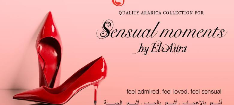 Rumours of 'halal sex shop' in Mecca boost profile of e-vendor of 'Sharia-compliant' sensual goods
