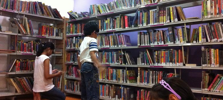 How I learnt to live and love in libraries
