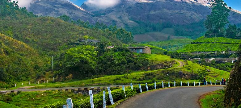 Munnar tea agitation is a warning to companies, politicians and... union leaders