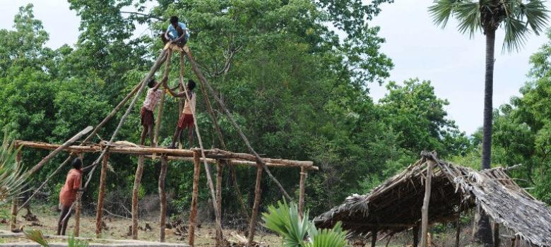 Plan to privatise 40% of forests will undermine law giving adivasis control of their habitats