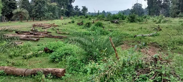 In Chhattisgarh, mining interests and tribal rights on a collision course
