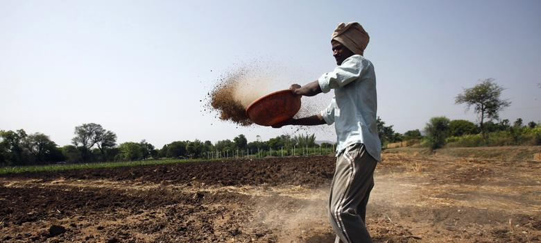 India expects to meet wheat production target despite unseasonal rains, says agriculture minister