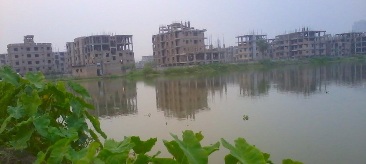 Greed and indifference are destroying east Kolkata's wetlands