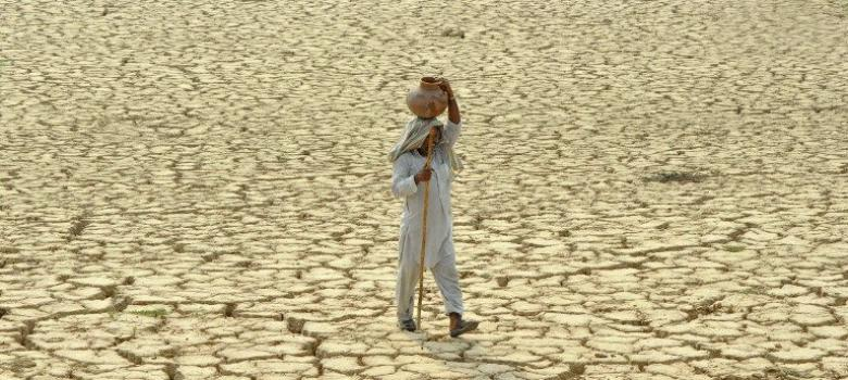 In drought-hit Maharashtra, nine farmers commit suicide every day