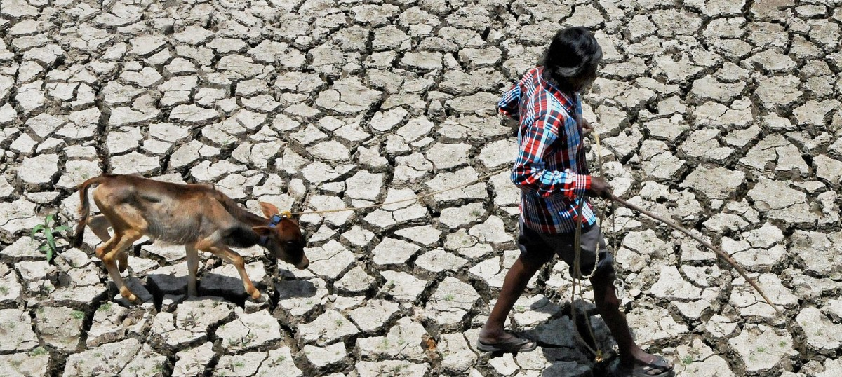 Governments have failed to implement the Supreme Court's orders on drought relief, say activists