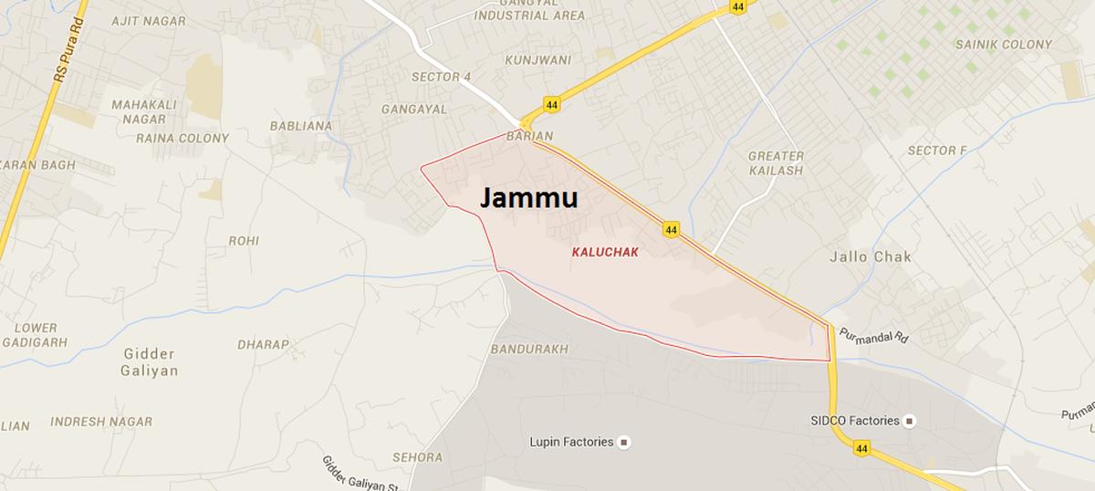 Jammu and Kashmir on high alert after paraglider was spotted over border near Kaluchak