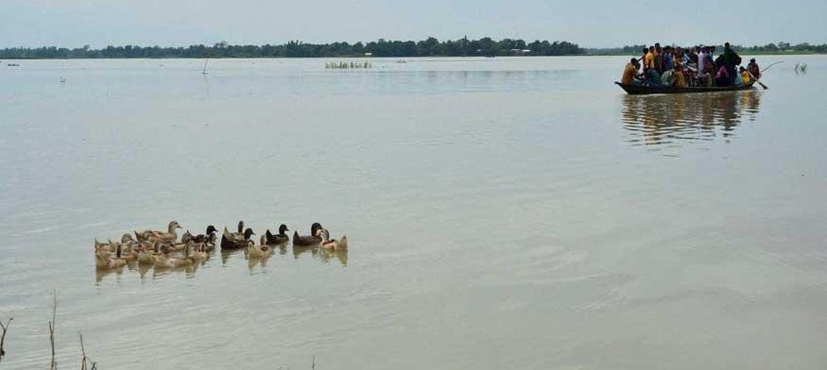 Assam floods: Toll reaches 13, Kaziranga National Park 90% under water
