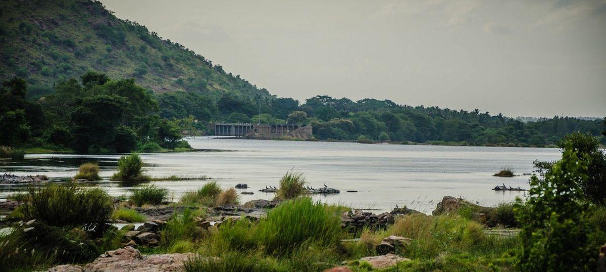 Cauvery dispute: CM Siddaramaiah says Karnataka will release water for Tamil Nadu 'despite hardship'