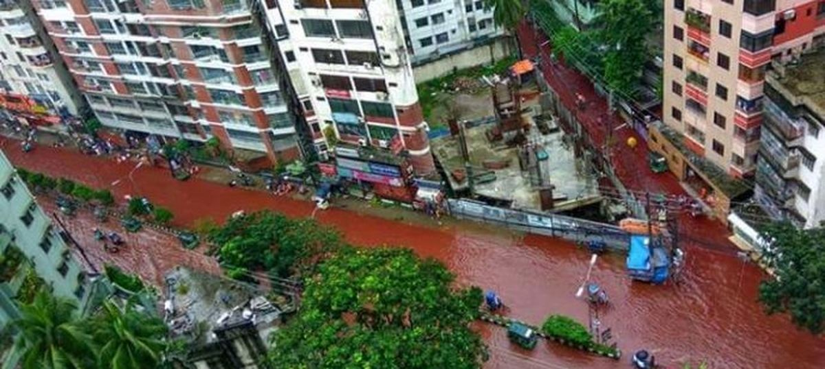 Rivers of blood run down Dhaka's streets as heavy downpour coincides with Bakr-Eid