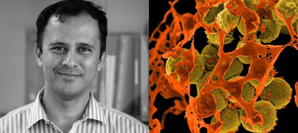 We live in a bacterial world and there are consequences of messing around: Ramanan Laxminarayan
