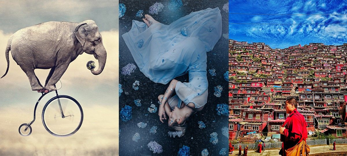 From bear cubs to Filipino dancers: Stunning entries for the world's biggest photography contest