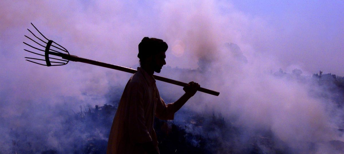 Pollution alert: Haryana receives Rs 13.75 lakh fine from 1,406 farmers for stubble burning