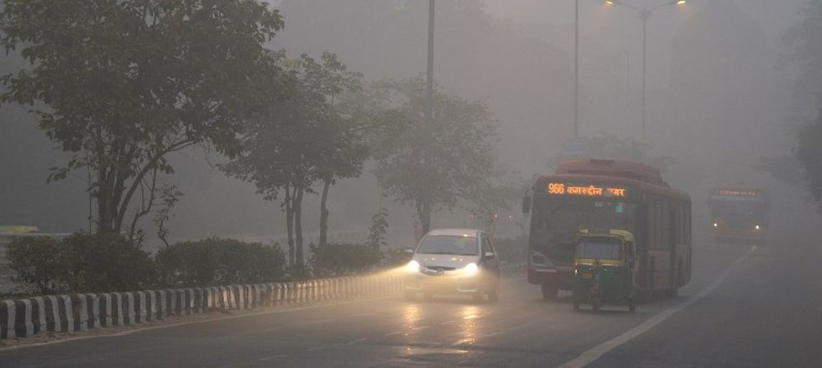Lessons from NASA: These plants can help Delhi residents breathe easier at home