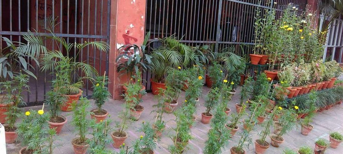 JNUSU protests, uses flowerpots placed by administration to spell out missing student's name