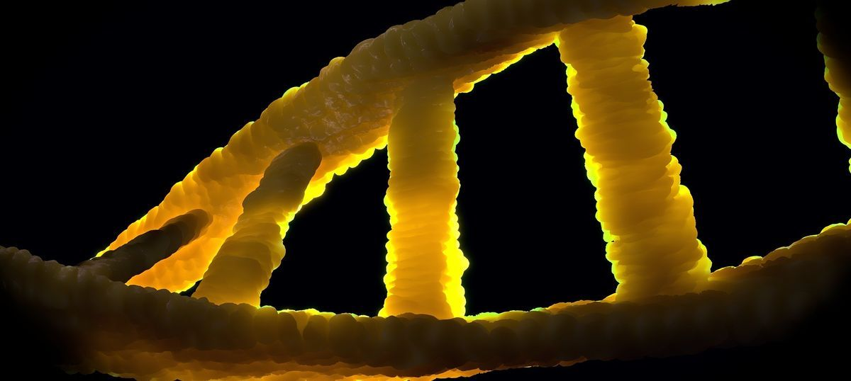 Why the scepticism about medical genetics must be encouraged