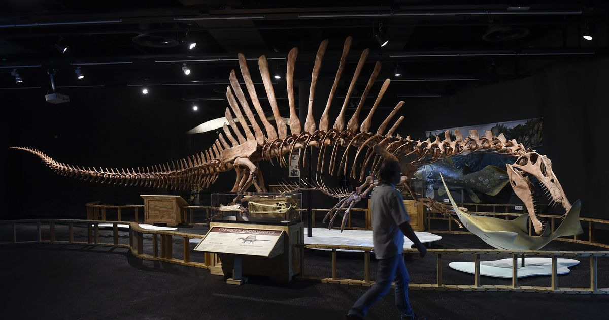Dinosaurs became extinct because of frigid conditions caused by acid clouds, finds new study