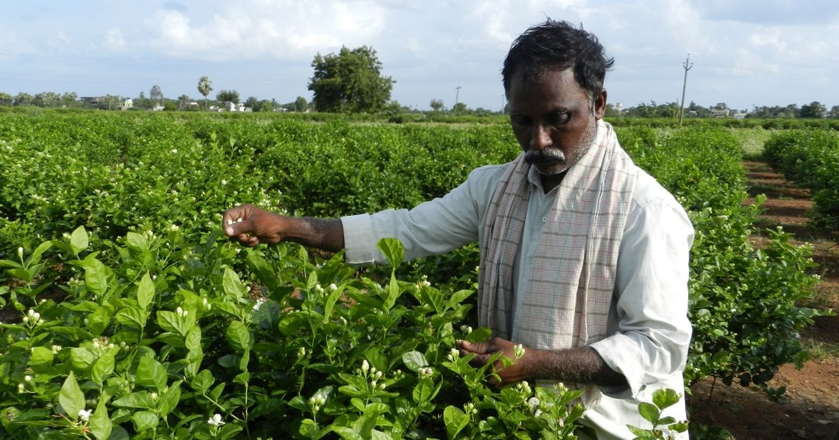 Andhra Pradesh wants to dilute the Central land acquisition law – and that could harm farmers