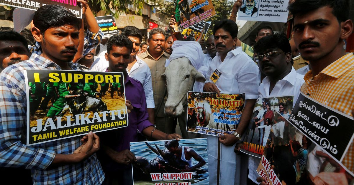 Tamil Nadu Assembly passes Bill to allow jallikattu
