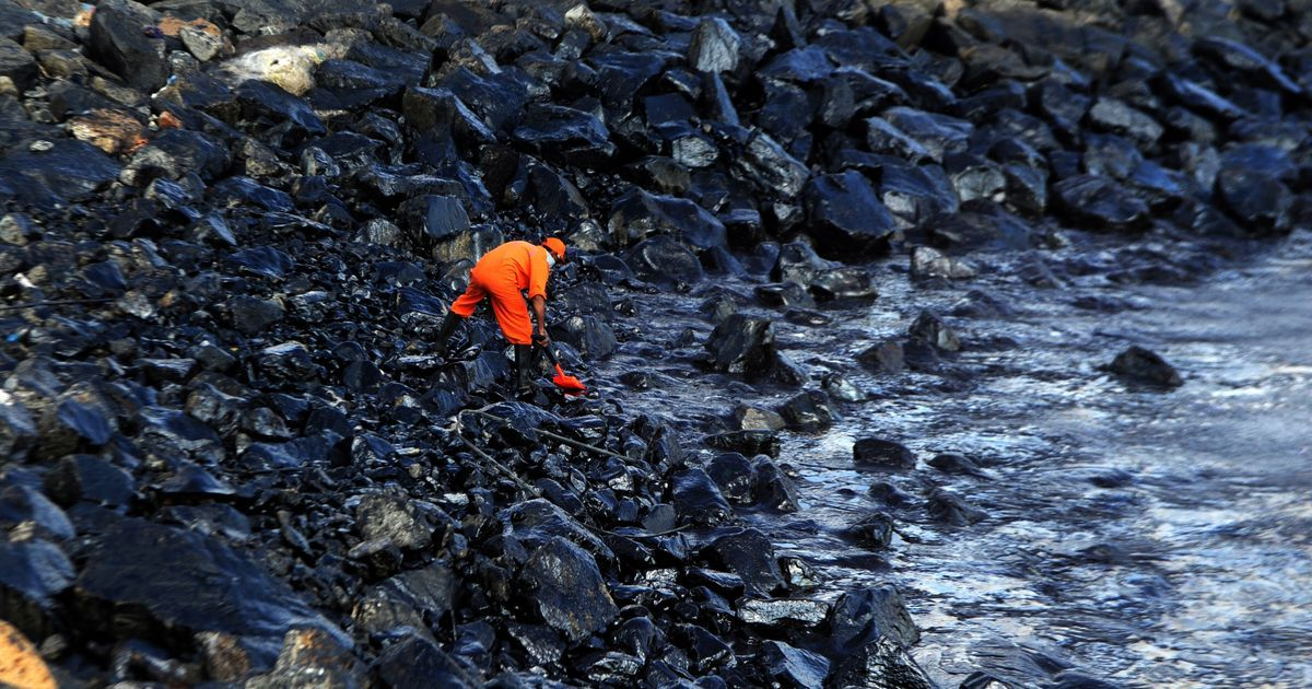 Chennai oil spill: As petroleum chokes the coast, no one wants to buy fish