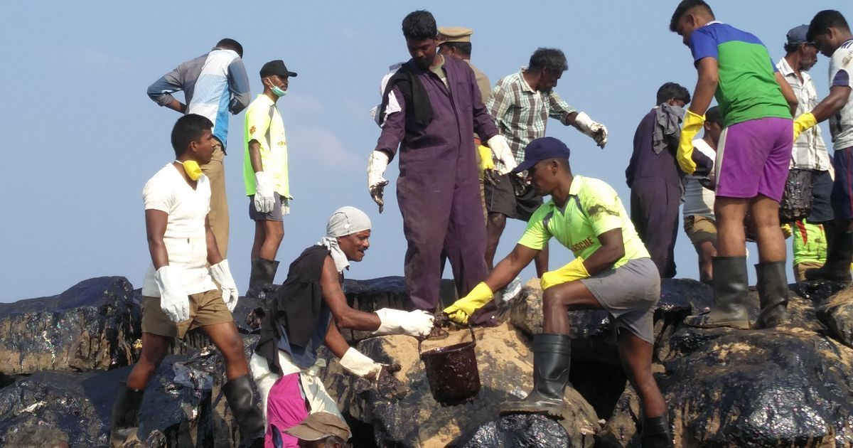 Chennai oil spill: With no machines working, volunteers are left to clean up one bucket at a time